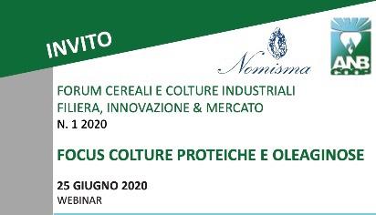 Forum cereali culture industriali filiera, innovazione & mercato