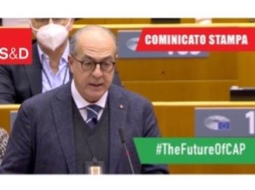 De Castro: Verso una politica agricola più Green che tuteli i produttori