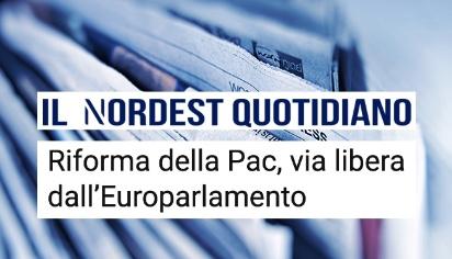Riforma della PAC, via libera dall'Europarlamento