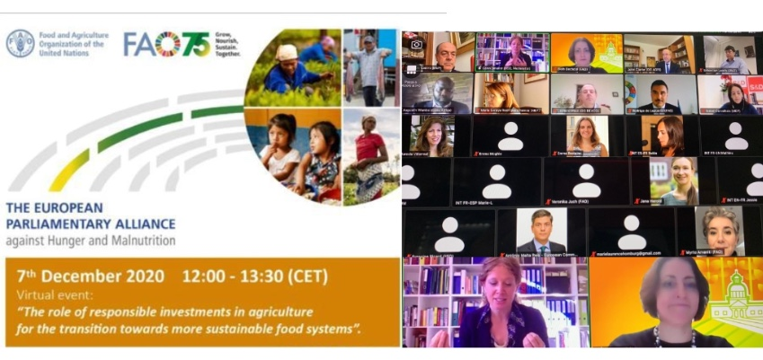 The role of responsible investments in agriculture for the transition towards more sustainable food systems