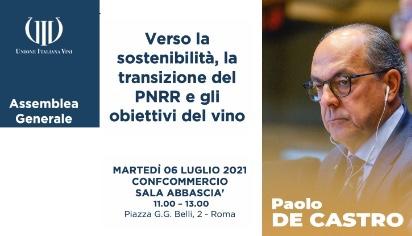 Verso la sostenibilità, la transizione del PNRR e gli obiettivi del vino