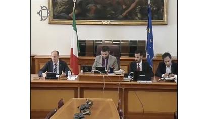 Audizione Parlamento Italiano