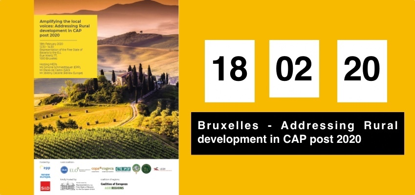 Amplifying the local voices: Addressing Rural development in Cap post 2020