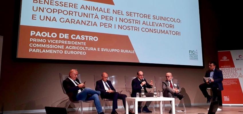 Benessere animale nel settore suinicolo