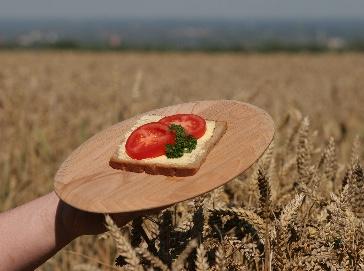 Strategia Farm To Fork sia base per patto fiduciario tra produttori e consumatori UE